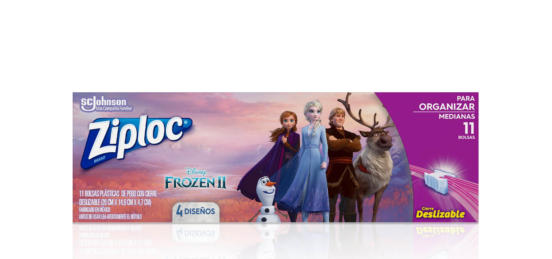 Frozen_Organizar_N_2x