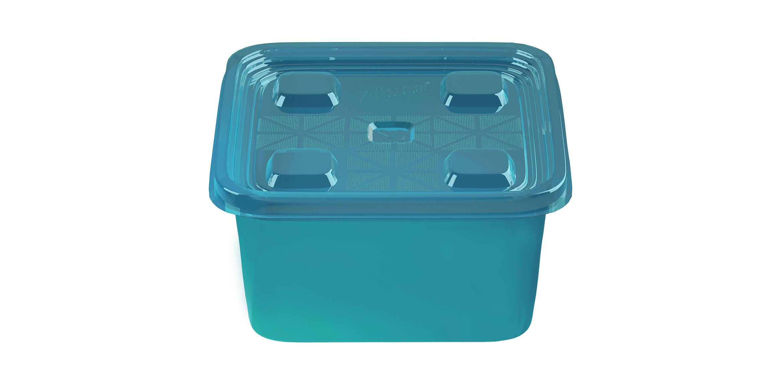 Nutcracker-Container-Square-Medium-Blue-Naked-2X