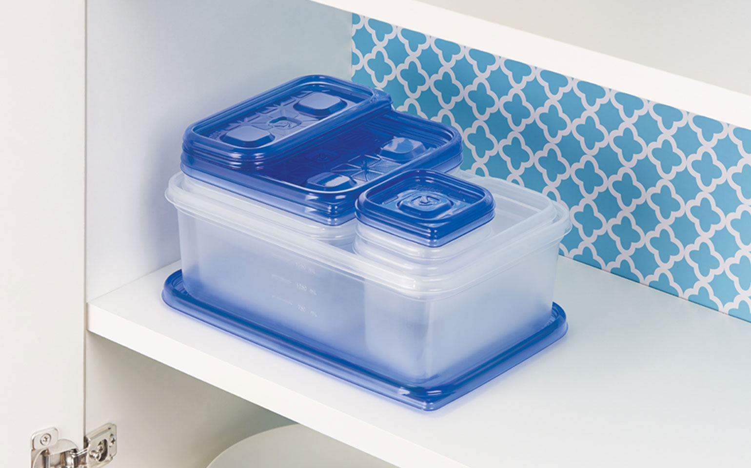 Containers Leftover Pack