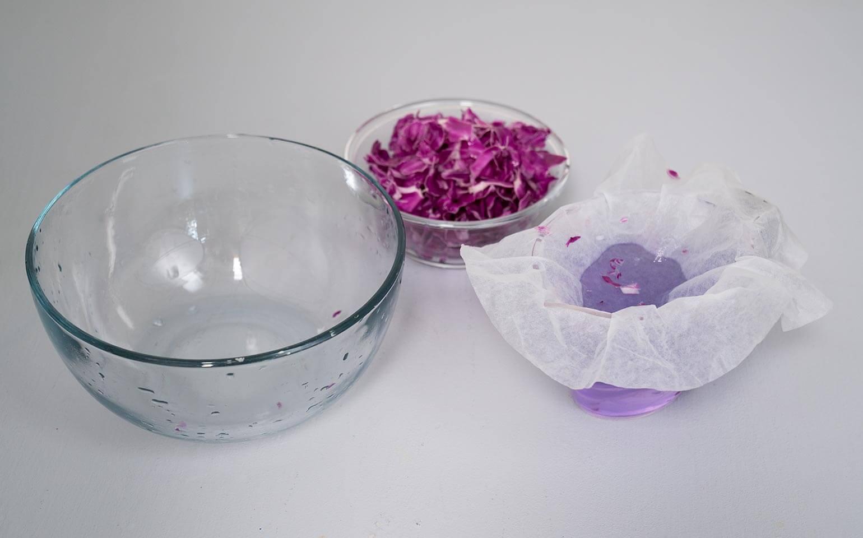 Cabbage-Chemistry-Body-3-2X