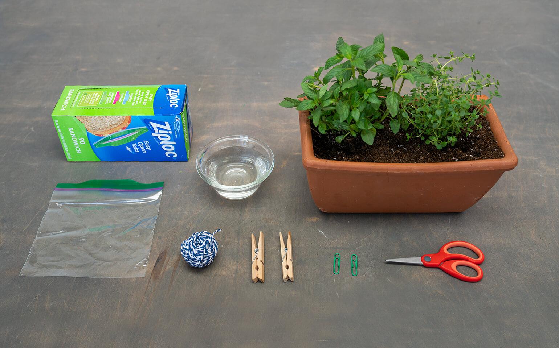 Self-Watering-Planter-Body-1-2x