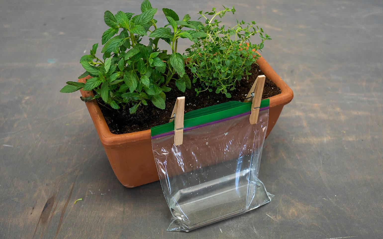 Self-Watering-Planter-Body-3-2x