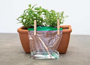 Self-Watering-Planter-Card-2x