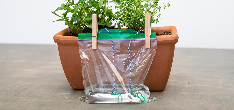 Self-Watering-Planter-Hero-2x