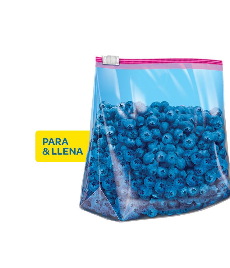 Bags_Slider_Storage_Gallon_RTB